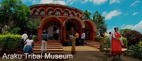 Araku Tribal Museum